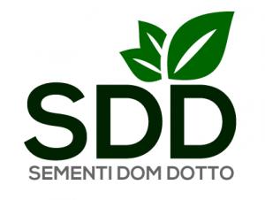 sdd logo
