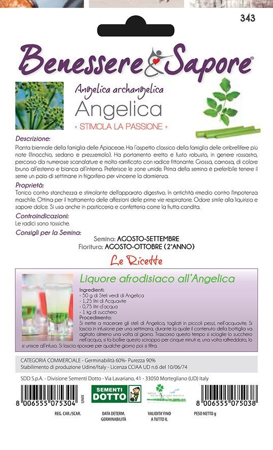 ARCHANGELICA Seeds tonico contro la stanchezza SEMI di ANGELICA