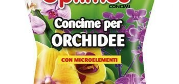 Optimus per Orchidee