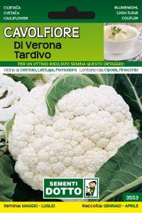 Cavolfiore di Verona Tardivo