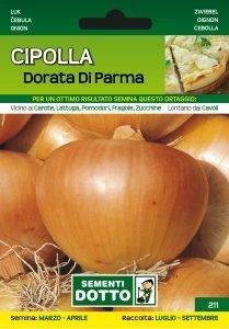 Cipolla Dorata di Parma