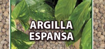 ARGILLA ESPANSA