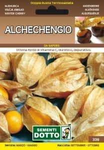 Alchechengio