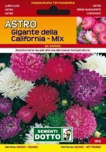 Astro Gigante della California