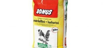 Bonus SD5 Cardellini e Lucherini