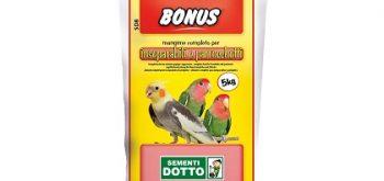 Bonus SD8 Inseparabili e Parrocchetti