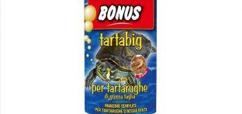 Bonus per Tartarughe Tartabig