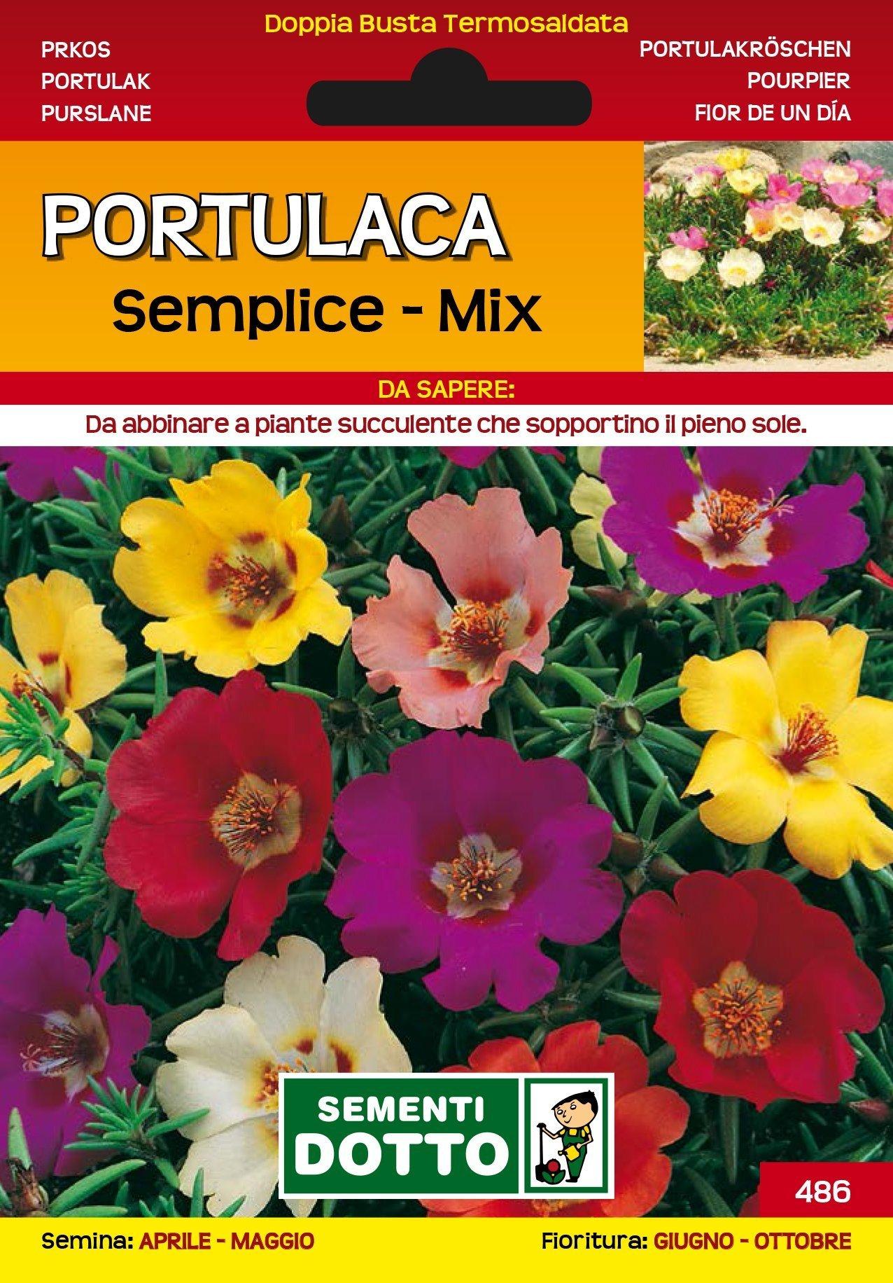 Fiori Da Piantare Nell Orto come e perché seminare i fiori in giardino - sementi dotto
