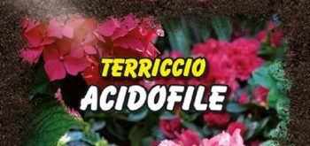 TERRICCIO ACIDOFILE OPTIMUS