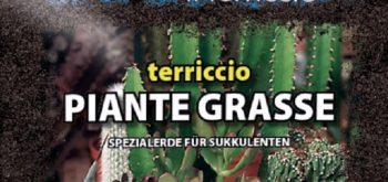 TERRICCIO PER PIANTE GRASSE