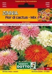 Zinnia Fior di Cactus