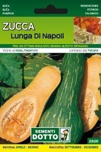 Zucca Lunga di Napoli
