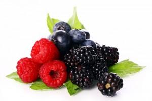 frutti-bosco-sdd