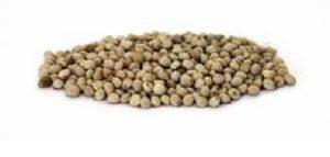 semi di perilla