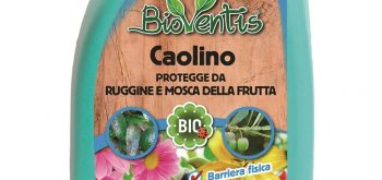 Caolino BioVentis