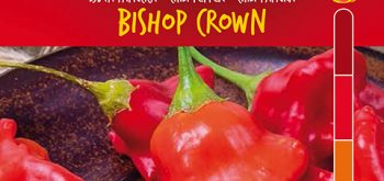 Peperoncino Bishop Crown