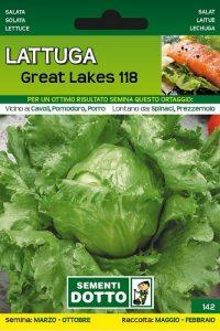 Lattuga-Great-Lakes