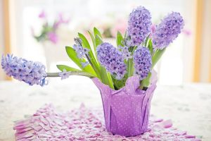 terrazzo invernale fiorito - Giacinti