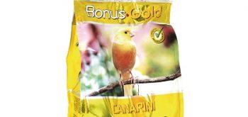 Bonus Gold Canarini