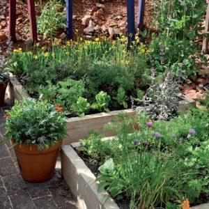Unione tra ortaggi e fiori