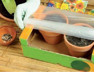 giocare a fare giardinaggio