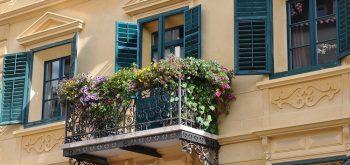 piante per un balcone in ombra