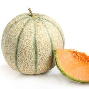 coltivare il Melone - Melone Esador