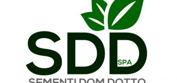 Logo Sementi Dom Dotto