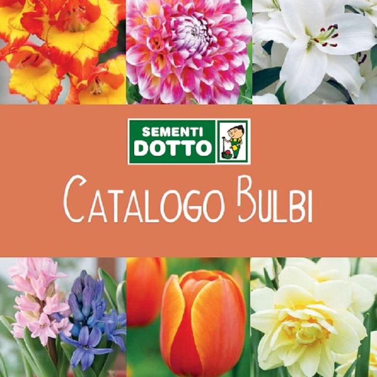 CATALOGO BULBI 2020
