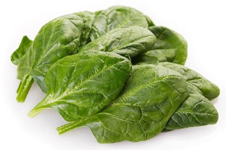 Coltivare gli Spinaci - Spinaci Early Hibrid N7