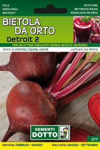 Bietola-da-Orto-Rossa-Detroit