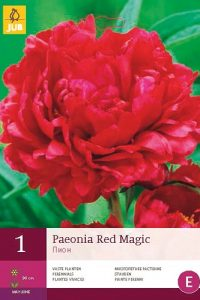 peonia red magic