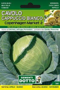 Cavolo-Cappuccio-Bianco-Copenhagen
