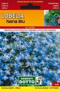 Lobelia-Nana-Blu
