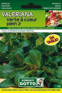 Valeriana-Verte-a-Coeur-Plein