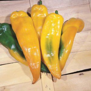 fiori di colore giallo - Peperone Corno Toro giallo