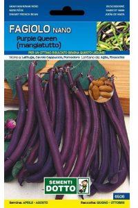 Fagiolo-Nano-Purple-Queen-Mangiatutto