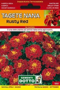 Tagete-Nana-Rusty-Red