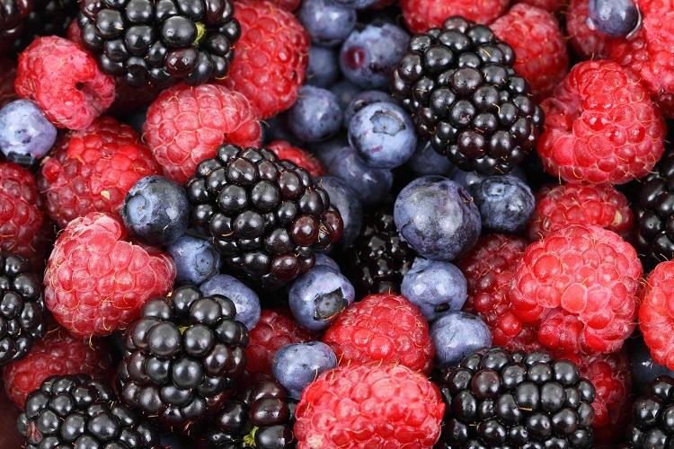 Frutti e verdure utili alla salute - More, Mirtilli e Lamponi